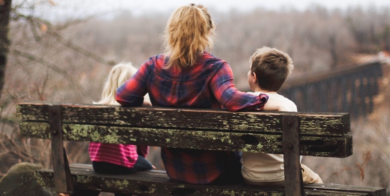 Family Counselling and Transitions in Family Life (Divorce, Separation, Death)
